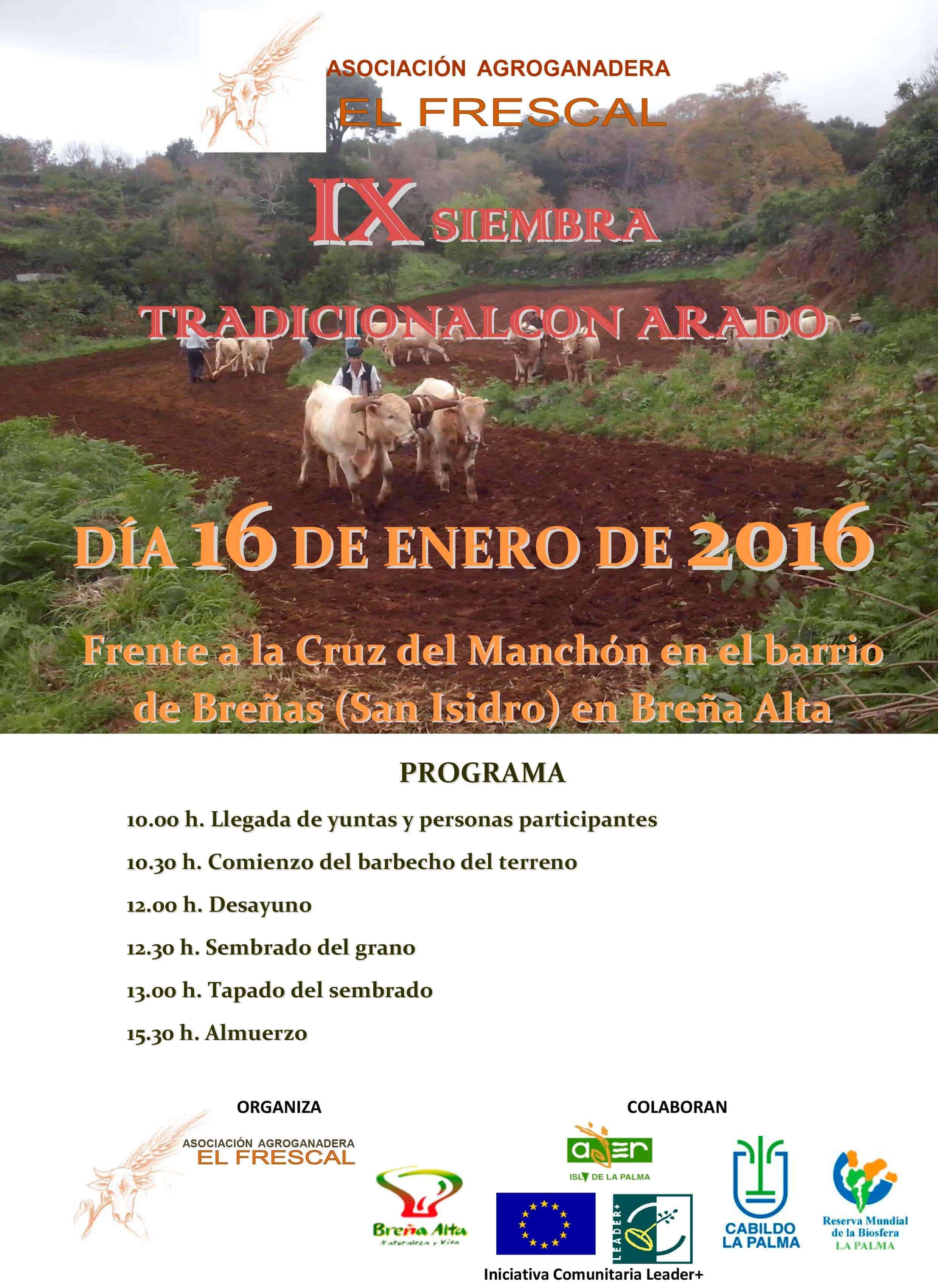 IX Edición de la Tradicional Siembra con Arado en Breña Alta