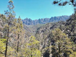 El Consejo de Participación de la Reserva Mundial de la Biosfera La Palma se reúne para abordar temas de la actualidad de la Isla y de la Fundación