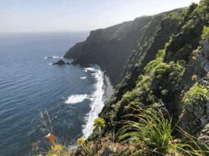 Ecofinca Nogales primer recurso turístico de La Palma en vincularse al Club de Ecoturismo en España