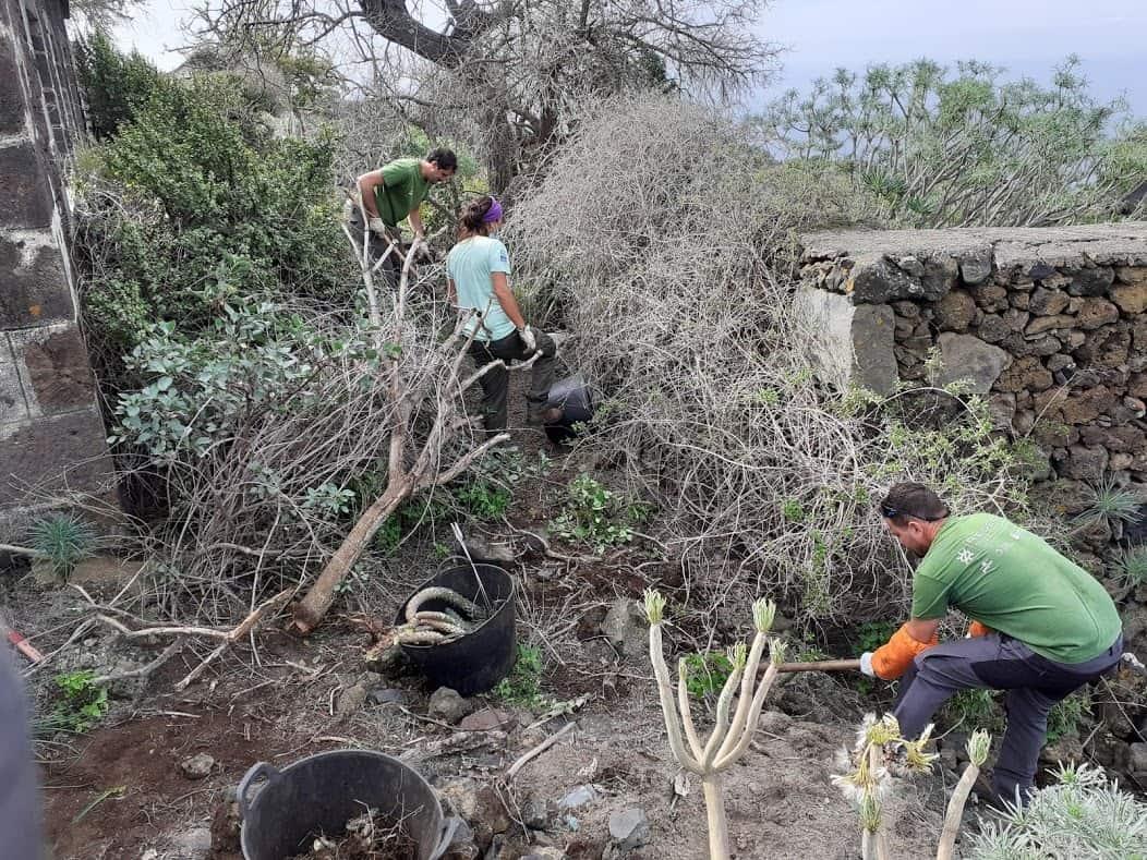 proyecto life IP Azores Natura